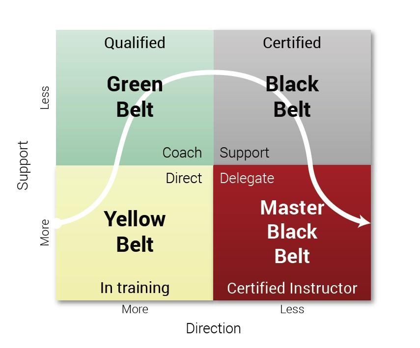 Six Sigma Green Belt Pecb